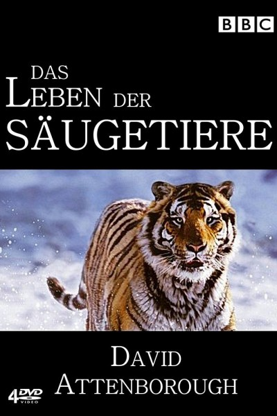 Caratula, cartel, poster o portada de La vida de los mamíferos