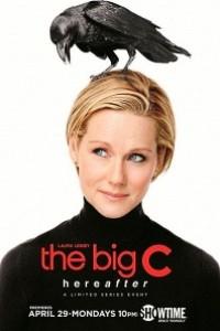 Caratula, cartel, poster o portada de Con C mayúscula (The Big C)
