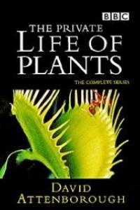 Caratula, cartel, poster o portada de La vida privada de las plantas