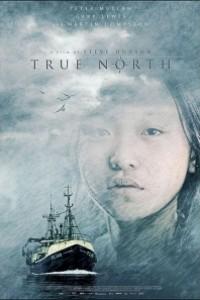 Caratula, cartel, poster o portada de True North