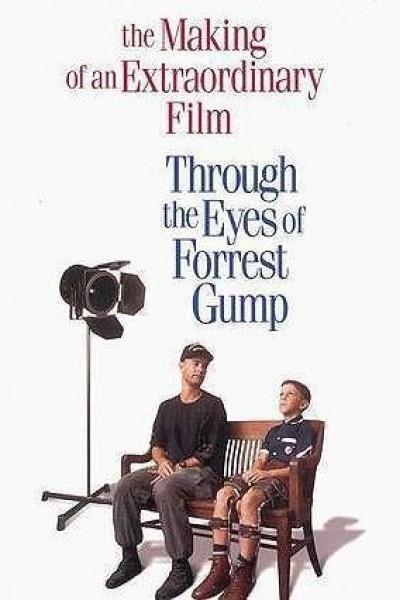 Caratula, cartel, poster o portada de A través de los ojos de Forrest Gump