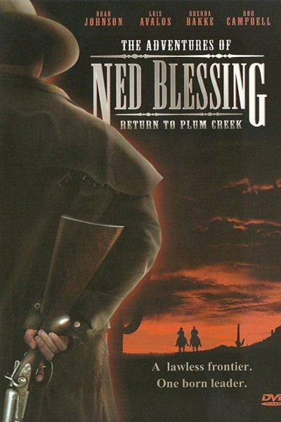 Caratula, cartel, poster o portada de Ned Blessing: The Story of My Life and Times