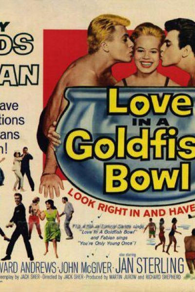 Caratula, cartel, poster o portada de Love in a Goldfish Bowl