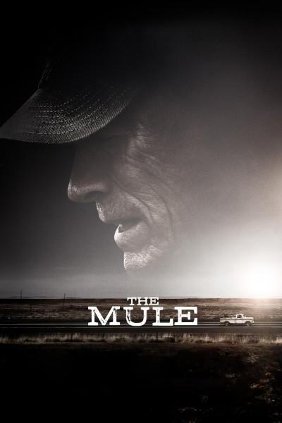 Caratula, cartel, poster o portada de Mula