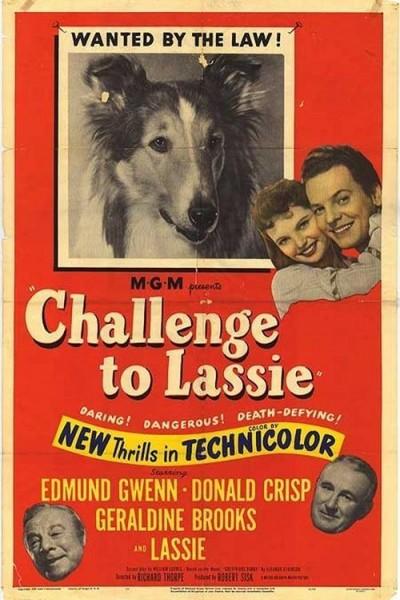 Caratula, cartel, poster o portada de El desafío de Lassie
