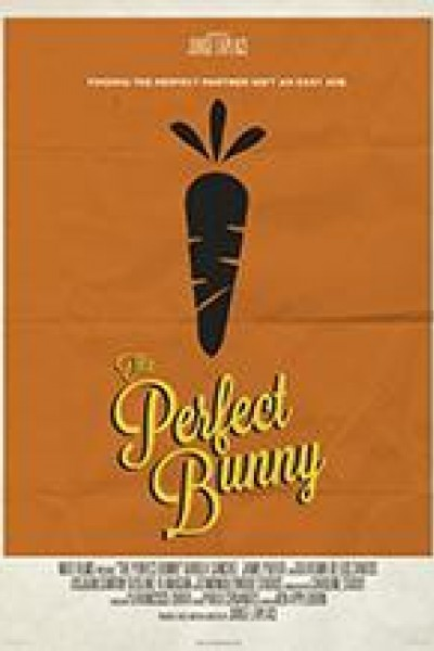 Caratula, cartel, poster o portada de The Perfect Bunny