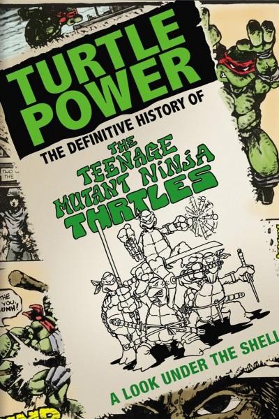 Caratula, cartel, poster o portada de Turtle Power: The Definitive History of the Teenage Mutant Ninja Turtles