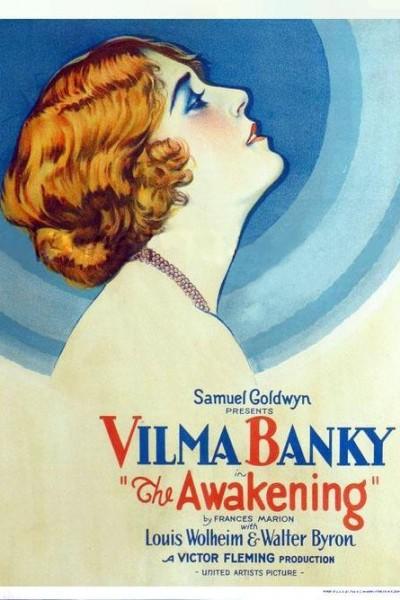 Caratula, cartel, poster o portada de The Awakening