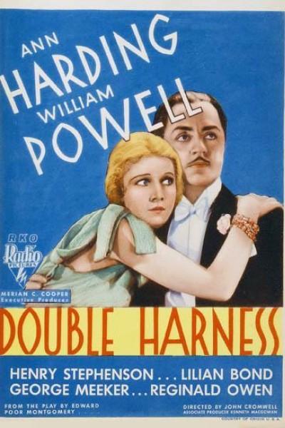 Caratula, cartel, poster o portada de Double Harness