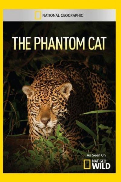Caratula, cartel, poster o portada de El felino fantasma