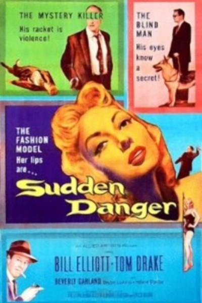 Caratula, cartel, poster o portada de Sudden Danger