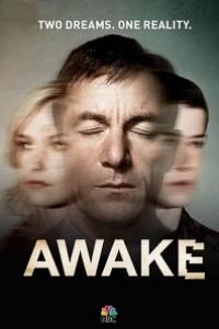 Caratula, cartel, poster o portada de Awake