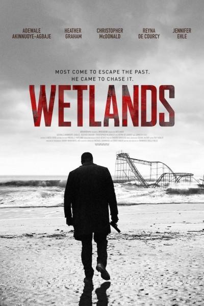 Caratula, cartel, poster o portada de Wetlands