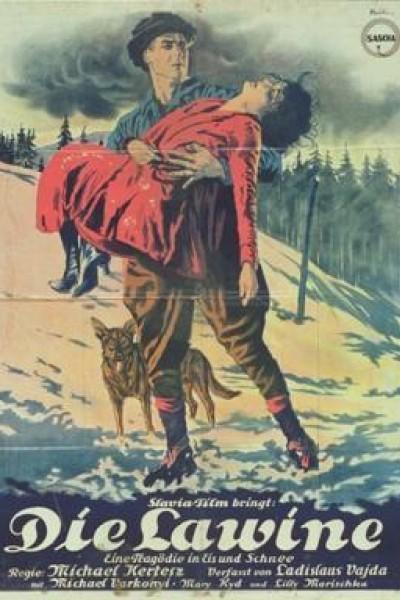 Caratula, cartel, poster o portada de La avalancha