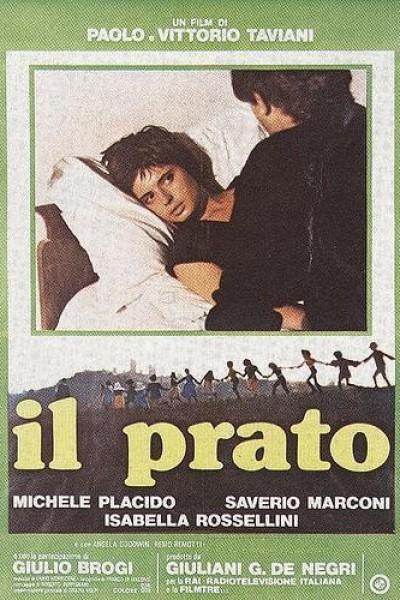 Caratula, cartel, poster o portada de El prado