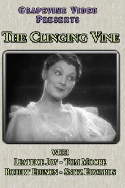 Caratula, cartel, poster o portada de The Clinging Vine