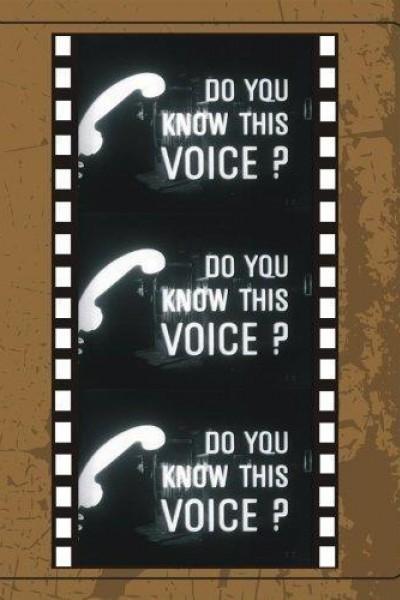 Caratula, cartel, poster o portada de Do You Know This Voice?