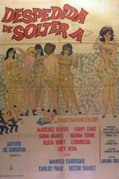 Caratula, cartel, poster o portada de Despedida de soltera