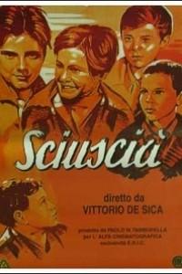 Caratula, cartel, poster o portada de El limpiabotas