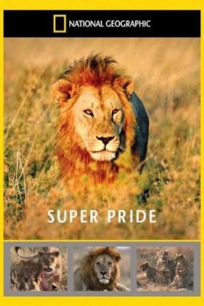 Caratula, cartel, poster o portada de Superpride (Super Pride)