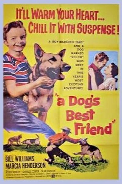 Caratula, cartel, poster o portada de A Dog\'s Best Friend