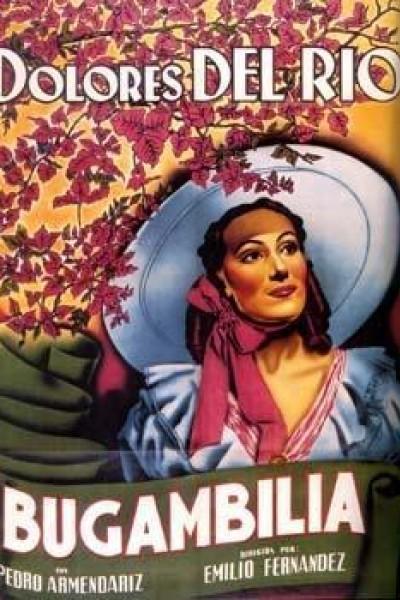 Caratula, cartel, poster o portada de Bugambilia