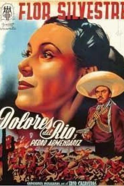 Caratula, cartel, poster o portada de Flor silvestre