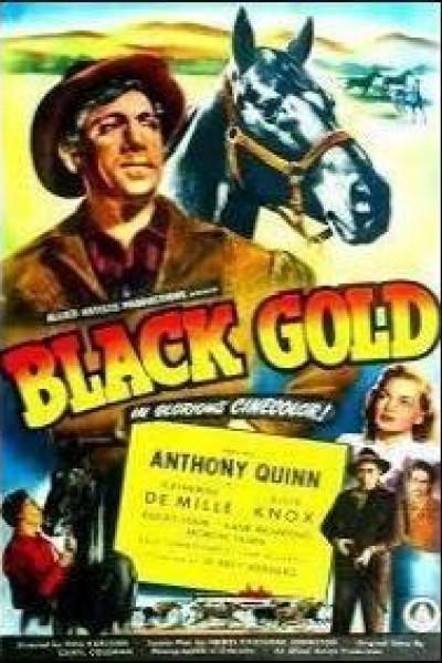 Caratula, cartel, poster o portada de Oro Negro
