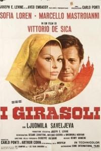 Caratula, cartel, poster o portada de Los girasoles