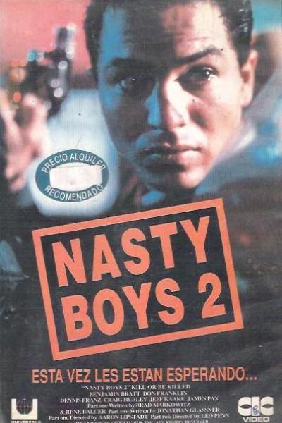 Caratula, cartel, poster o portada de Nasty Boys 2