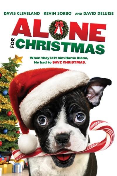 Caratula, cartel, poster o portada de Alone for Christmas