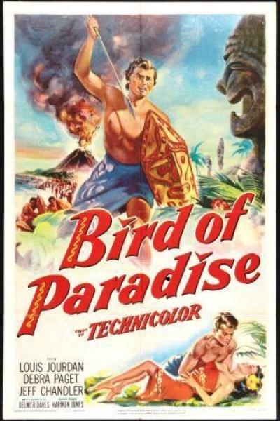 Caratula, cartel, poster o portada de Ave del paraíso