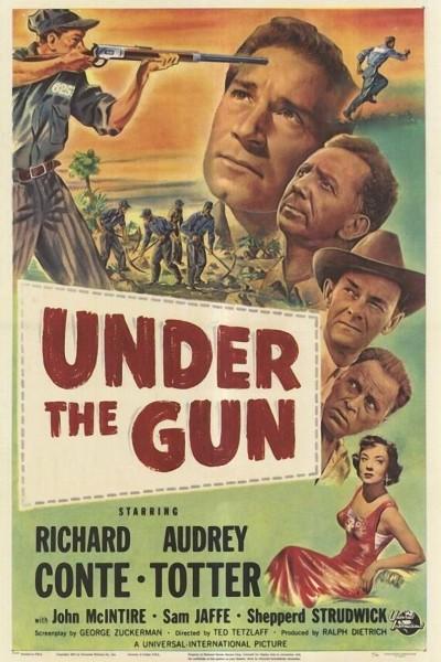 Caratula, cartel, poster o portada de Under the Gun