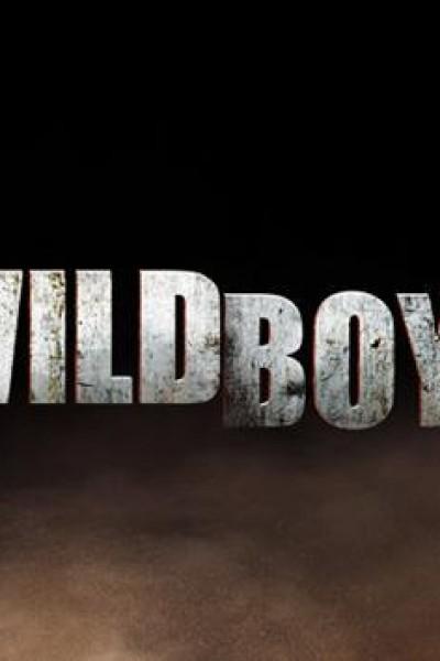 Caratula, cartel, poster o portada de Wild Boys