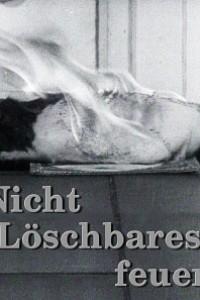 Caratula, cartel, poster o portada de El fuego inextinguible