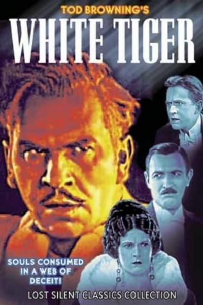 Caratula, cartel, poster o portada de El tigre blanco
