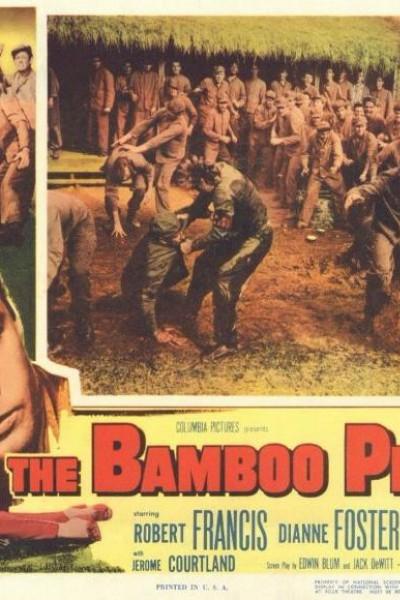 Caratula, cartel, poster o portada de The Bamboo Prison