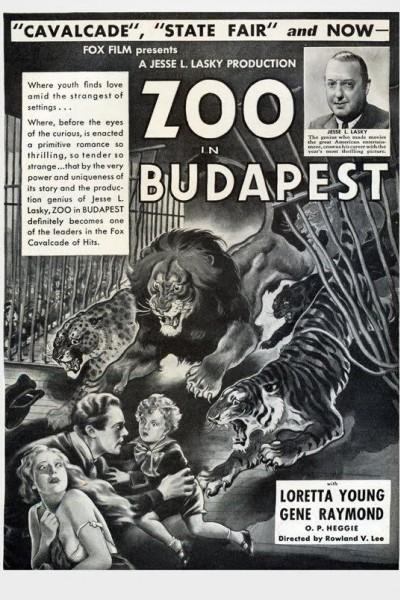 Caratula, cartel, poster o portada de Huérfanos en Budapest