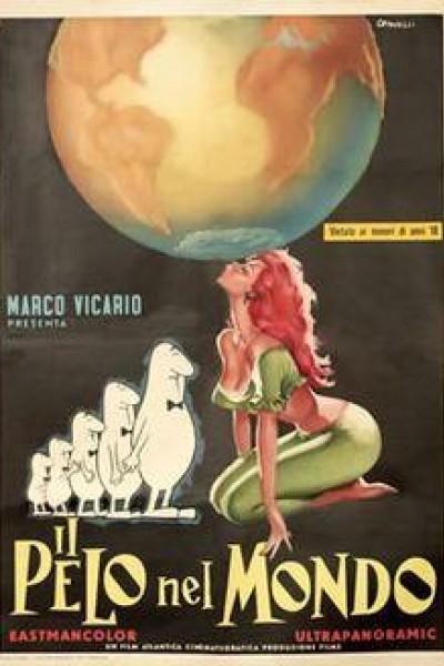 Caratula, cartel, poster o portada de Il pelo nel mondo
