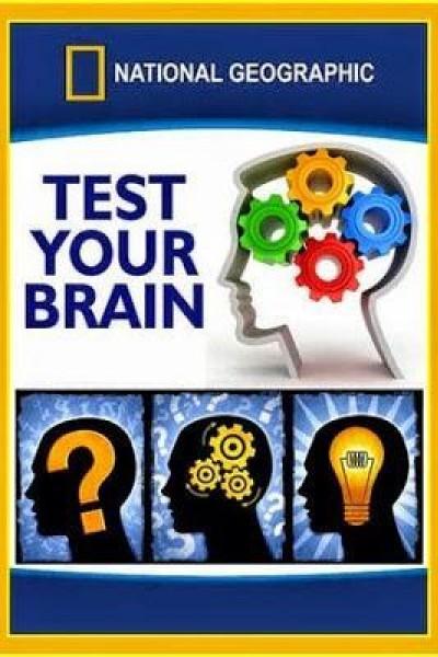 Caratula, cartel, poster o portada de Pon a prueba tu cerebro