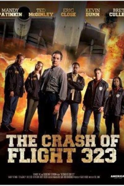 Caratula, cartel, poster o portada de La catástrofe del vuelo 323