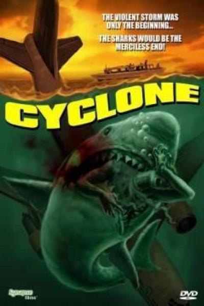 Caratula, cartel, poster o portada de Ciclón