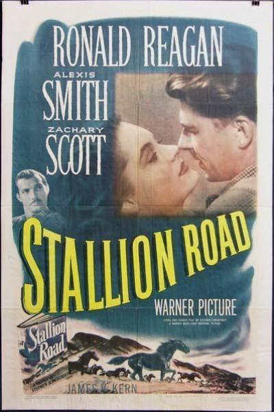 Caratula, cartel, poster o portada de Stallion Road