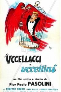Caratula, cartel, poster o portada de Pajaritos y pajarracos