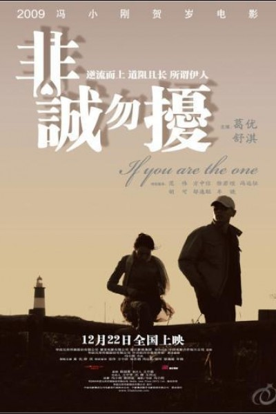 Caratula, cartel, poster o portada de If You Are the One