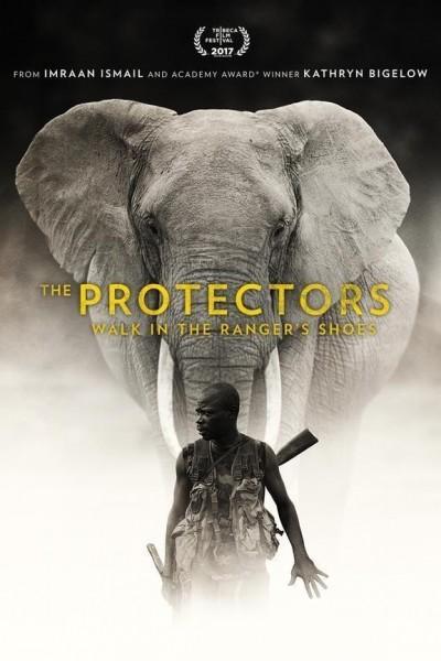 Caratula, cartel, poster o portada de The Protectors