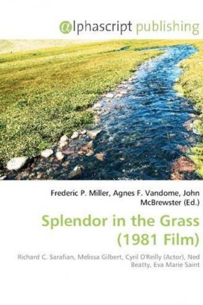 Caratula, cartel, poster o portada de Esplendor en la hierba