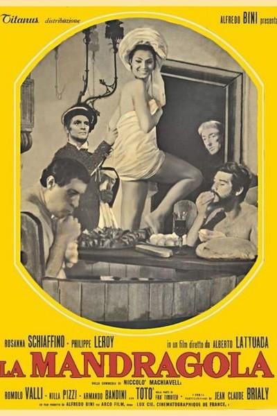 Caratula, cartel, poster o portada de La mandrágora