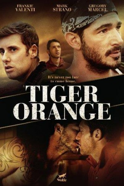 Caratula, cartel, poster o portada de Tiger Orange