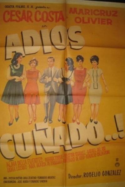 Caratula, cartel, poster o portada de ¡Adios cuñado!